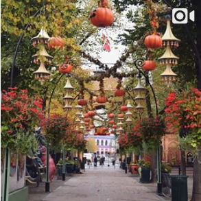 Screenshot-2017-11-12 Tivoli København ( tivolicph) • Photos et vidéos Instagram(2)