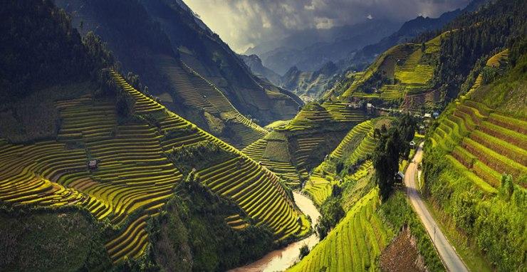 riziere-sapa-ha-giang-vietnam