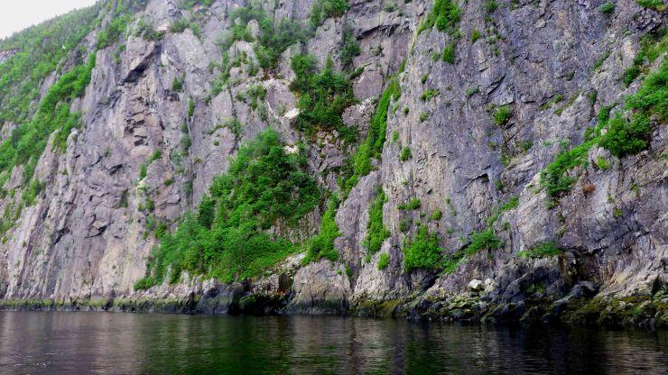 FjordSaguenay